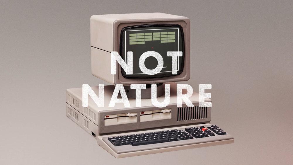 Natures Sweetness (1080p) (00274).jpg