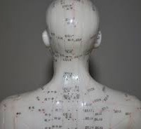 Acupuncture Points 2.jpg