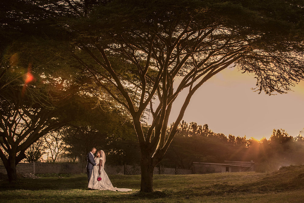 kenya-wedding-acacia-tree.jpg