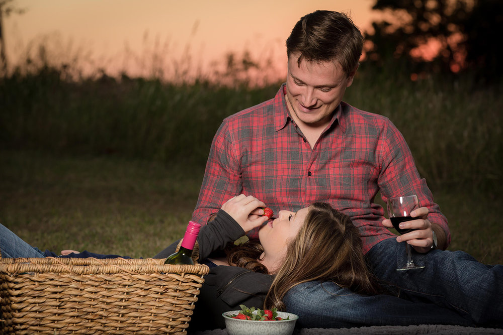 picnic-engagement-shoot.jpg