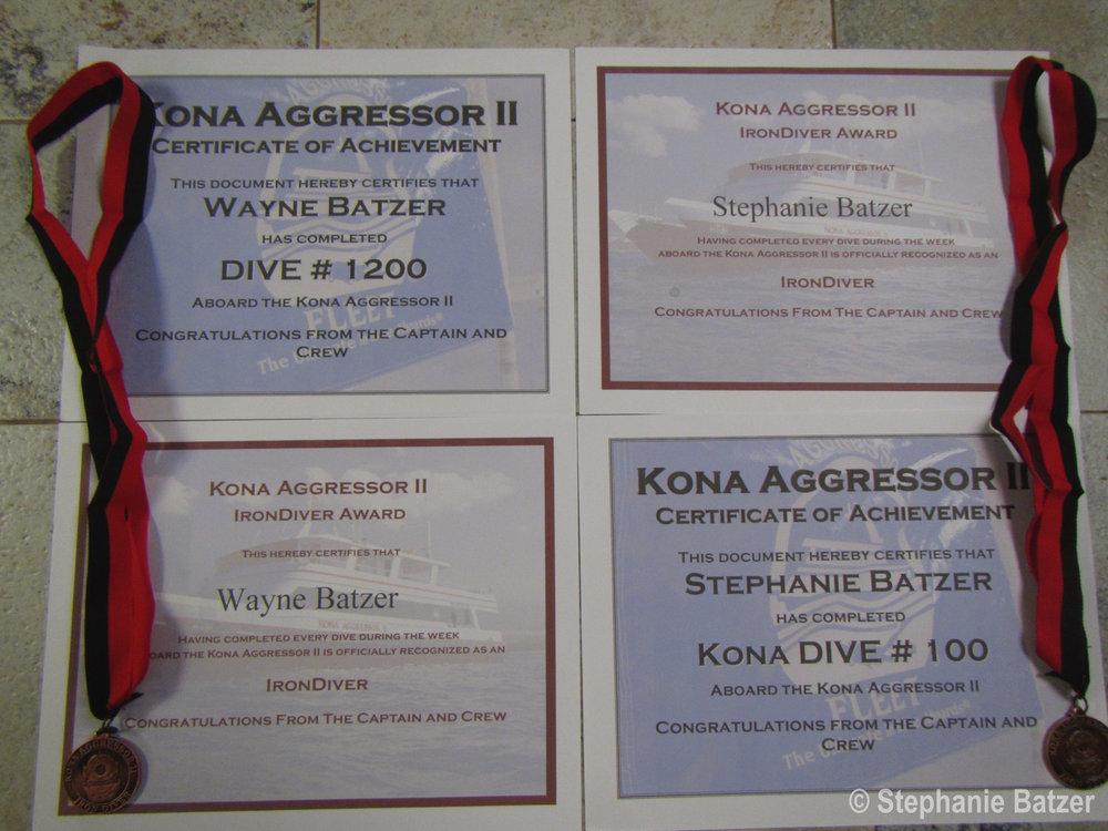 Iron Divers!