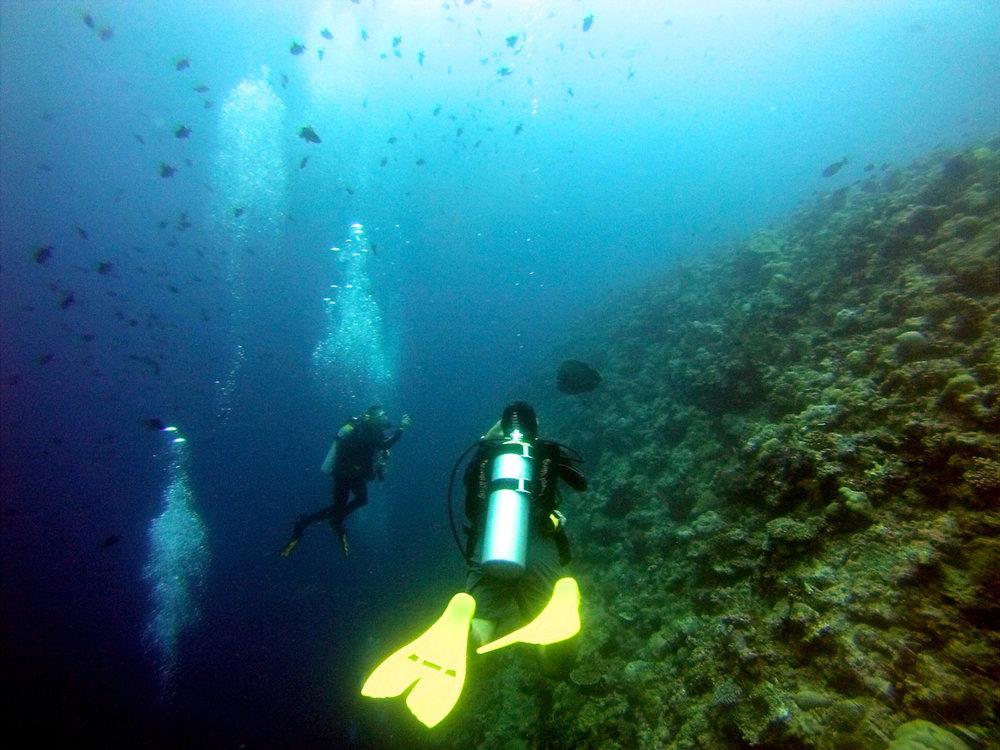 Palau Jun 13 (17 of 115).jpg