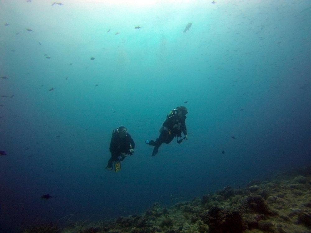 Palau Jun 13 (22 of 115).jpg