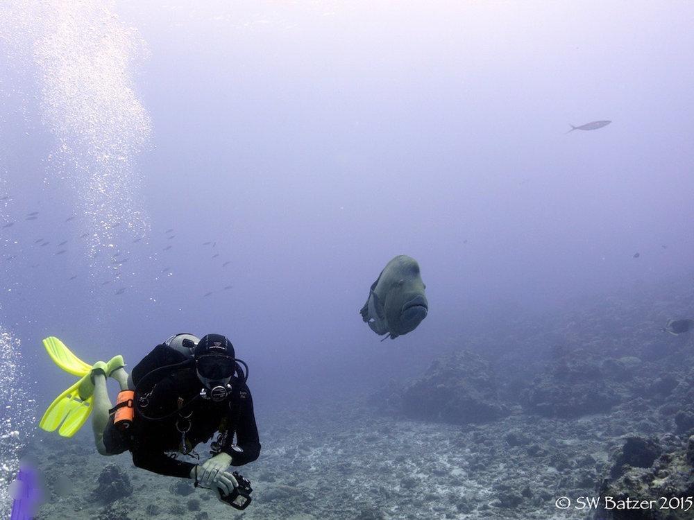 Palau Yap 2015 (45 of 143).jpg