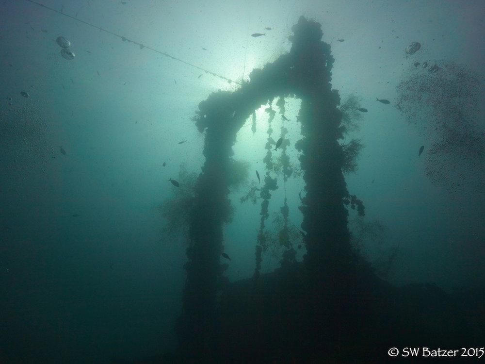 Palau Yap 2015 (57 of 143).jpg