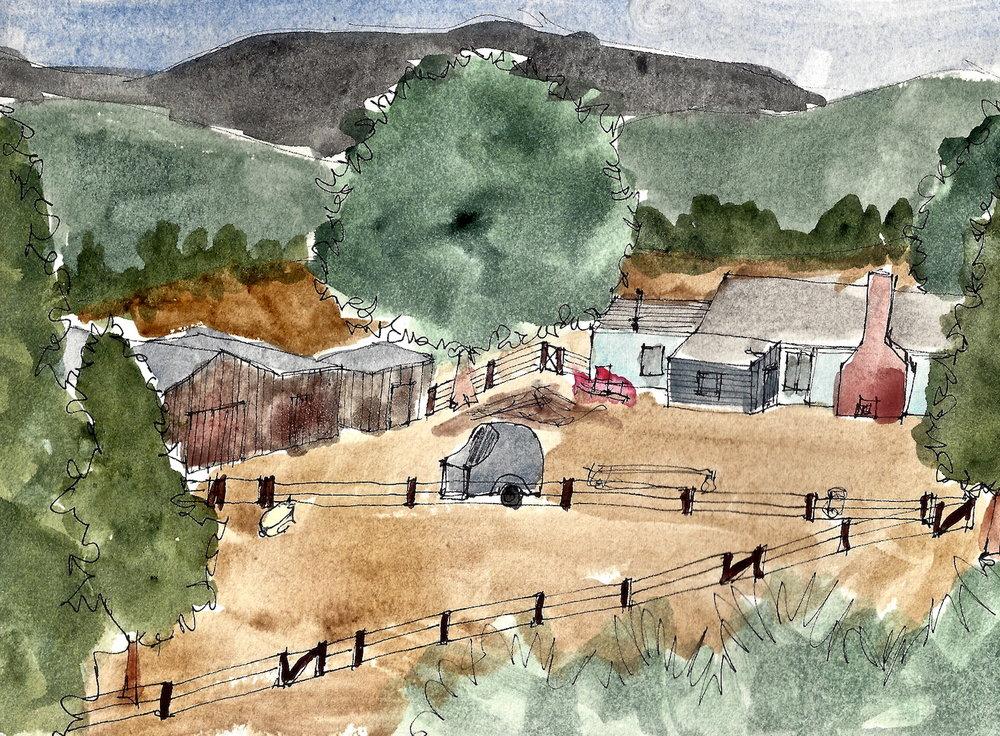 Mimi's Ranch