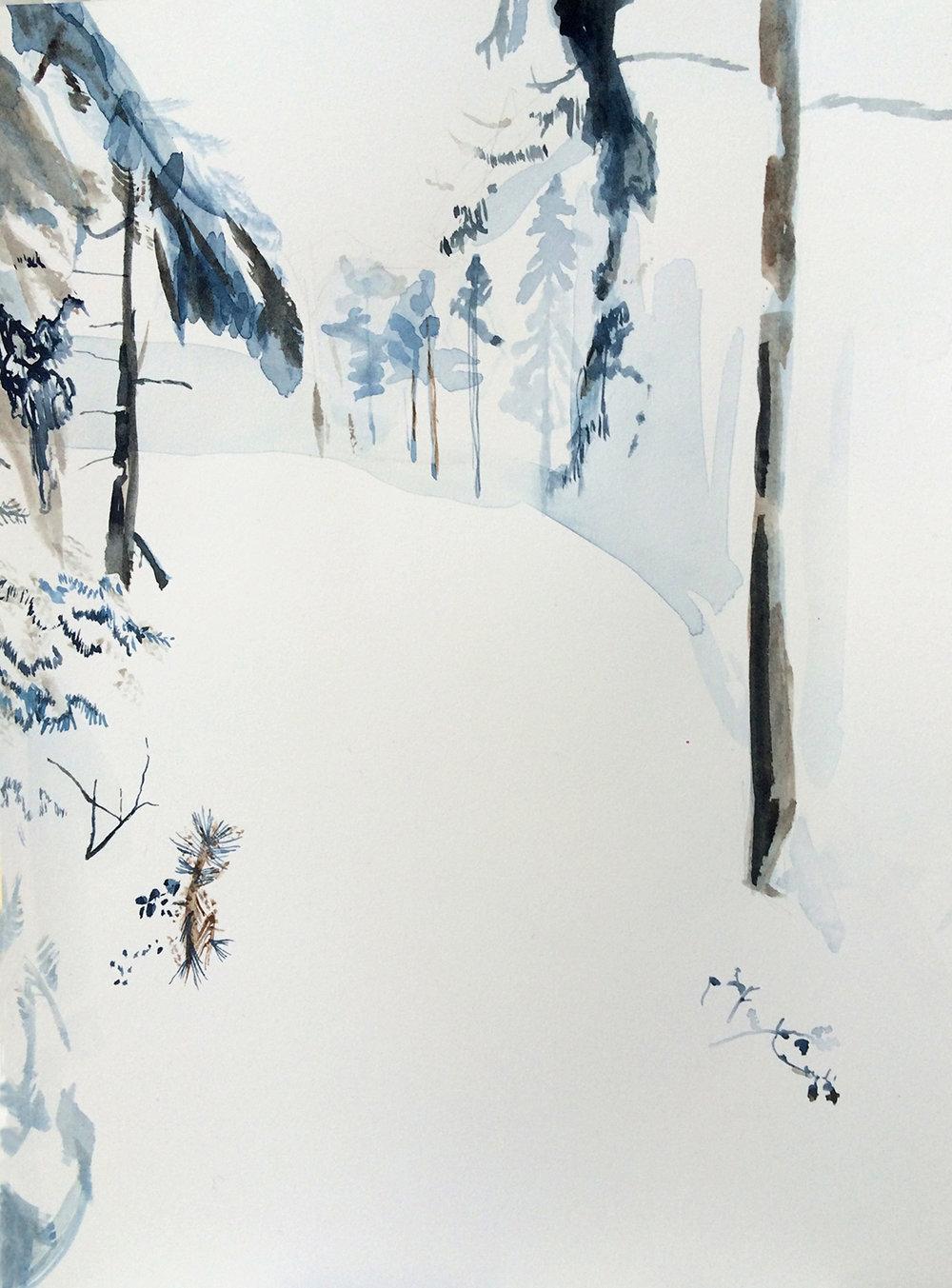 Caldera Snow Ski,  SOLD