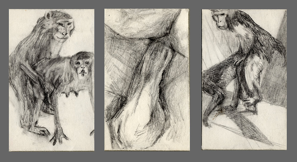 "Primal Instinct  Selected drawings from   Private Mail Pencil on 1 3/4"" x 2 3/4"" envelopes"