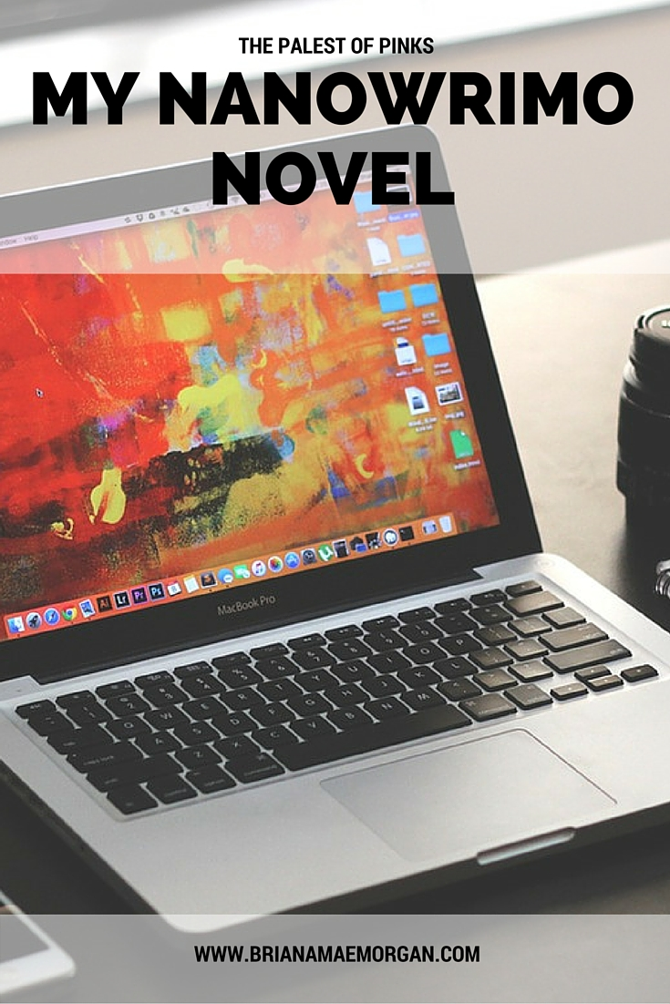 My NaNoWriMo Novel