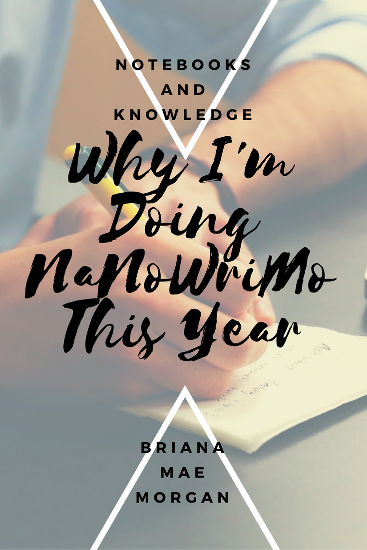 why-i'm-doing-nanowrimo-this-year