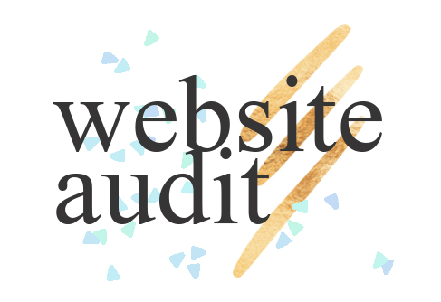 website audit.jpg