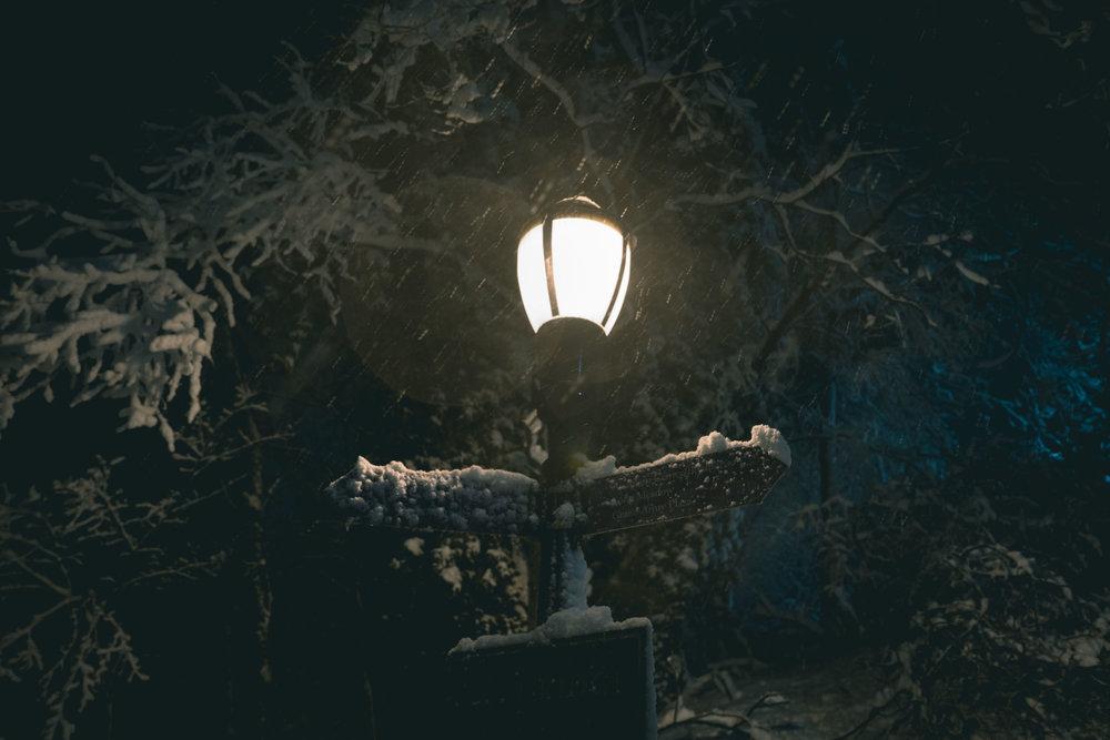 prospect park snowy lamp post night photograph by robert ravenscroft nyc and austin photographer