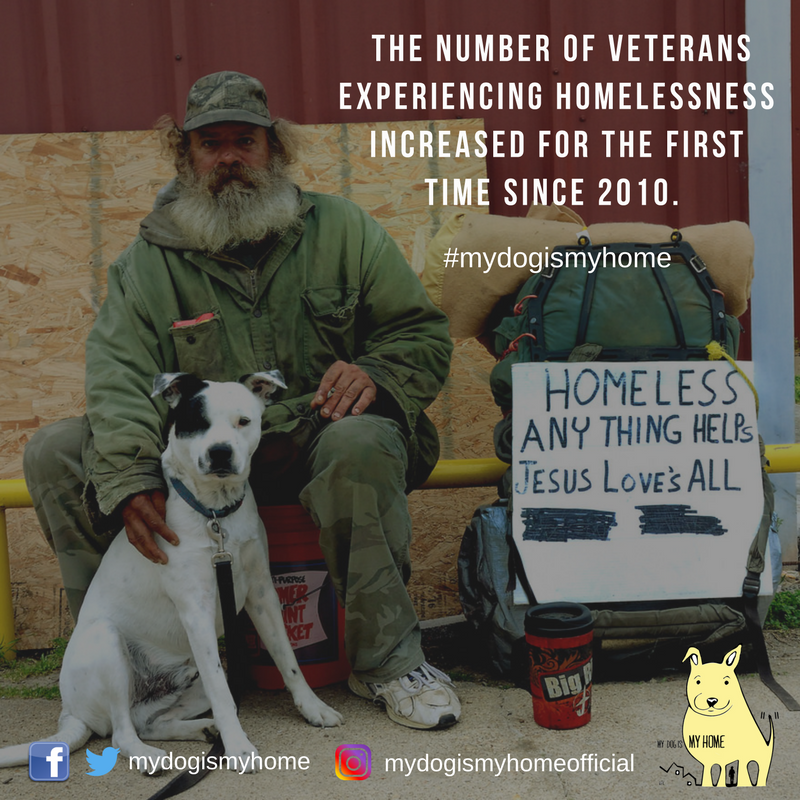 The number of veterans experiencing homelessness increased for the first time since 2010. (2).png