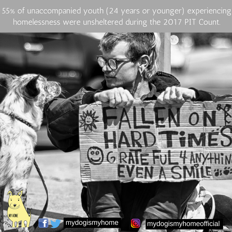 Most unaccompaniedyouth (88%) were between the ages of 18 and24. Unaccompanied youth were more likelyto be unsheltered (55%) than both all peopleexperiencing homelessness (35%) and all peopleexperiencing homelessness (2).png