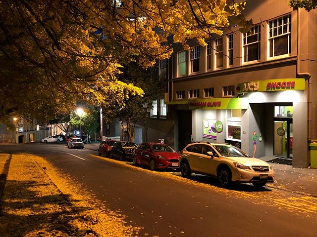 Winter in our neighbourhood... #emilyplace #auckland #winter #autumn #eveningwalk #citylife #aucklandcity #cbd #thestatesmanapartments
