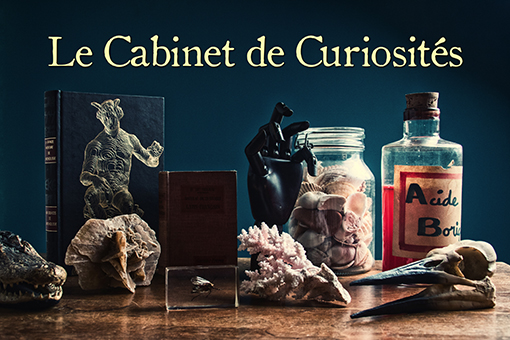bookeo_Cabinet_curiosités © charles esnault pour escape yourself.jpg