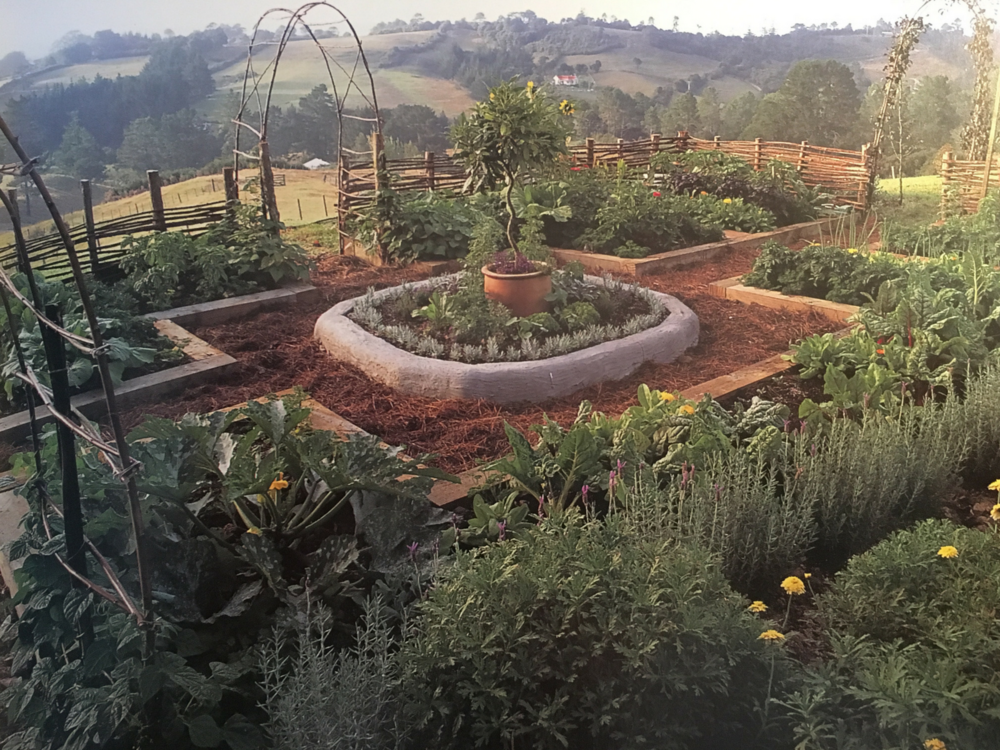 Reference: Photo by Gil Hanly from the book New Zealand Potager The Ornamental Vegetable Garden, Author Diana Anthony