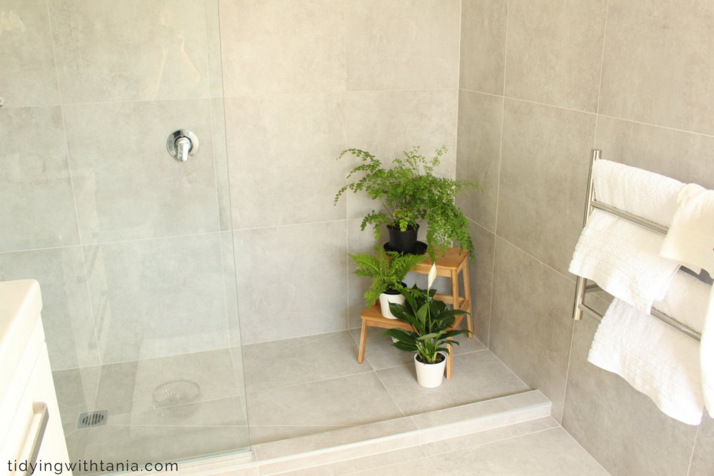 EnSUITE : wall to wall shower