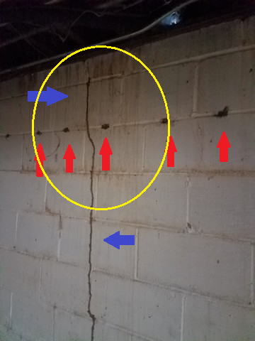 Here is an image from a local home we recently inspected. The red arrows are where termite-targeted pesticides have previously been applied. The line going in between them from the floor and almost to the ceiling is an ACTIVE termite trail.