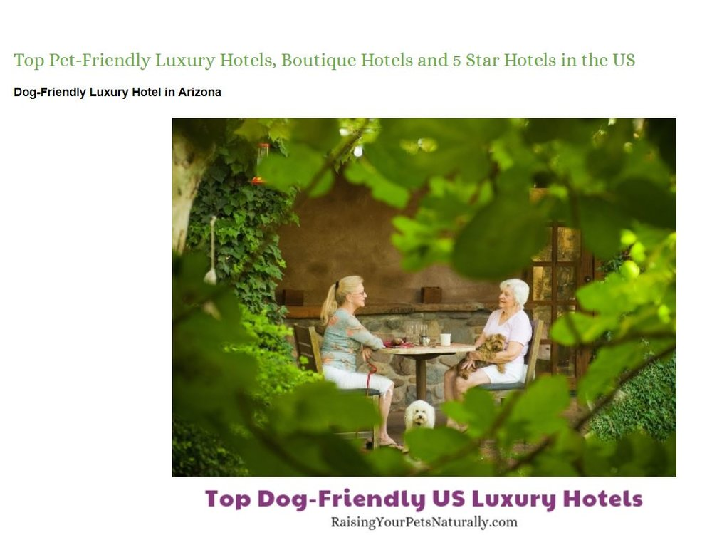 Luxury Dog-Friendly Hotels and Pet-Friendly 5 Star Boutique Hotels