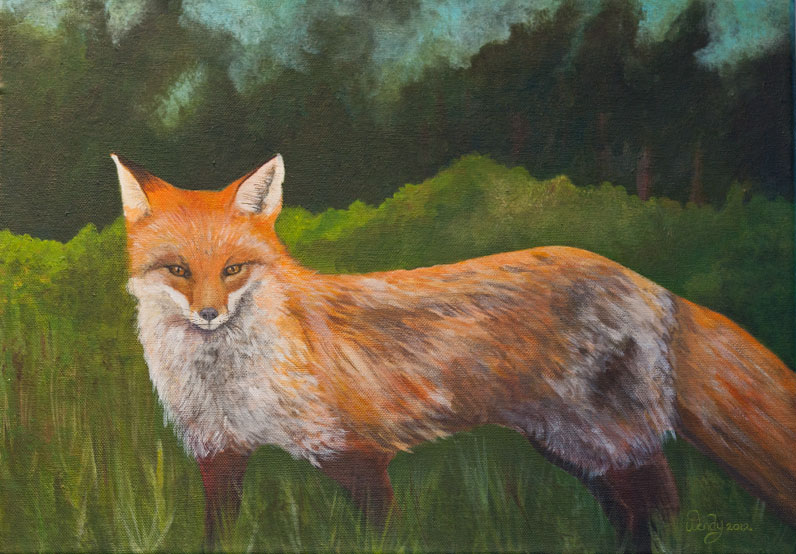 Listening ~ Red Fox. Acrylic on Canvas