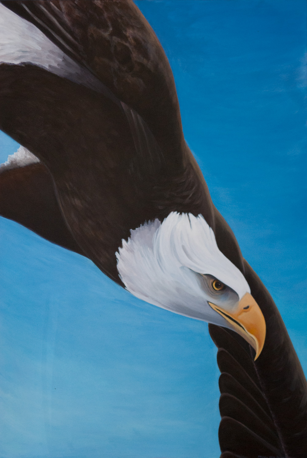 Freedom ~ American Bald Eagle Acrylic on Canvas
