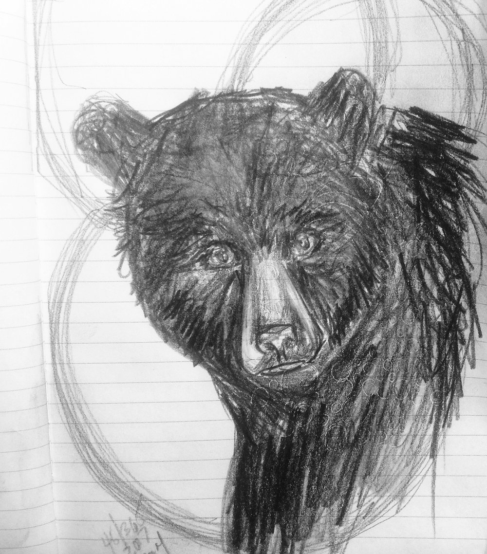 Art a day 46 365 black bear nature focused artist wendy wetherbee