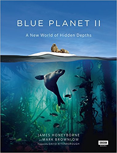 Blue Planet II, by James Honeybrone and Mark Brownlow, £10, Amazon (Hardcover)