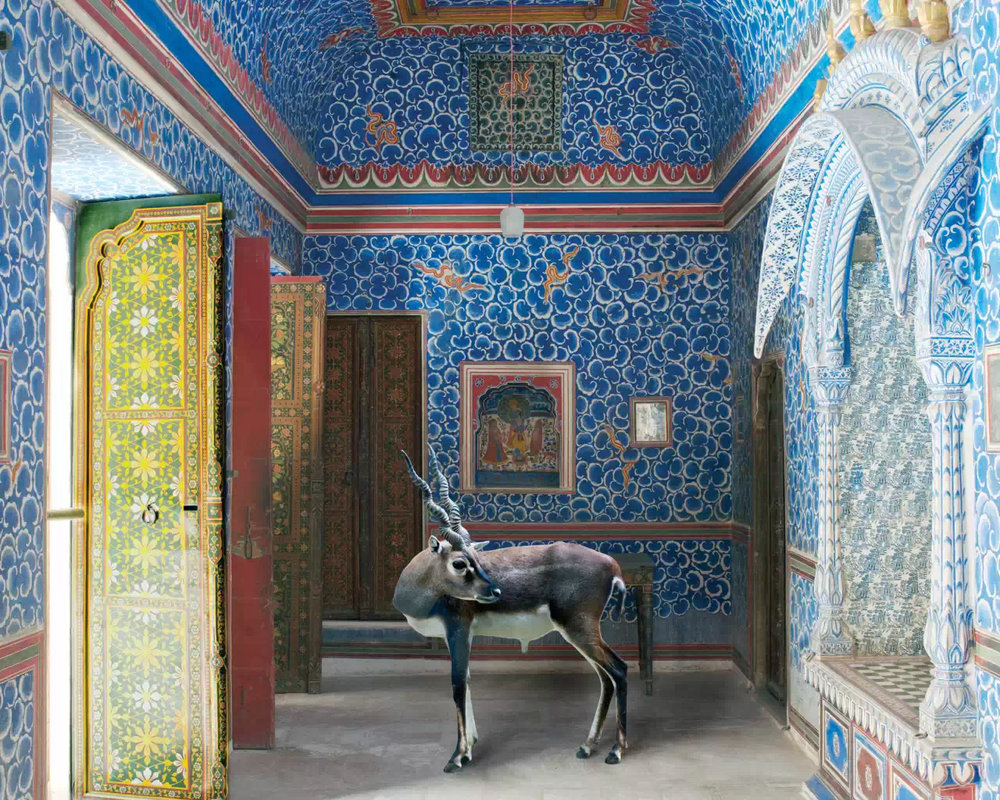 Karen Knorr, The Sound of Rain, The Cloud Room, Junargarh Fort, Bikaner