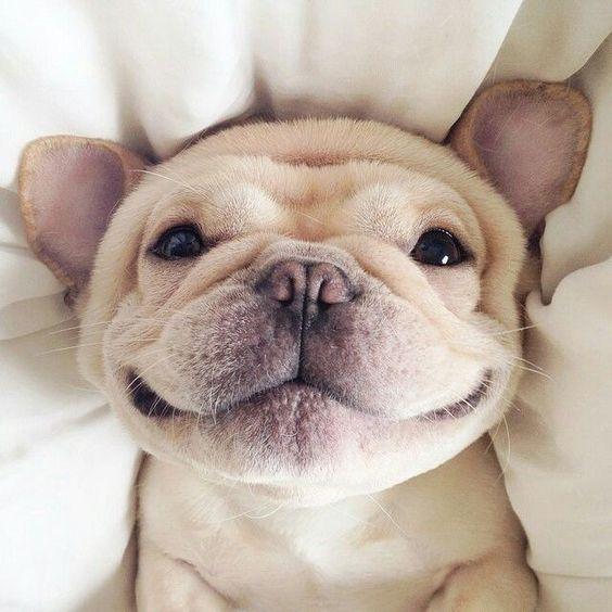 SMILE !!! !! !