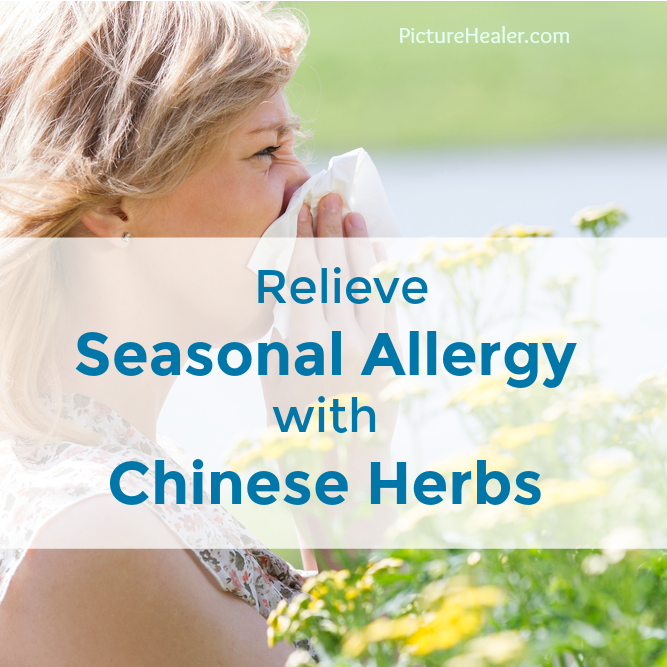 seasonal allergy chinese herbs
