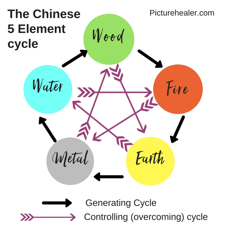 5 element Generating Cycle.jpg