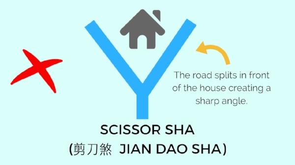 8 Scissor Sha.jpg
