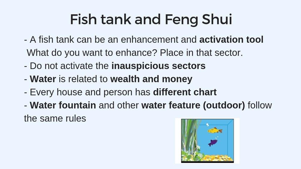 Fish+tank+1.jpg
