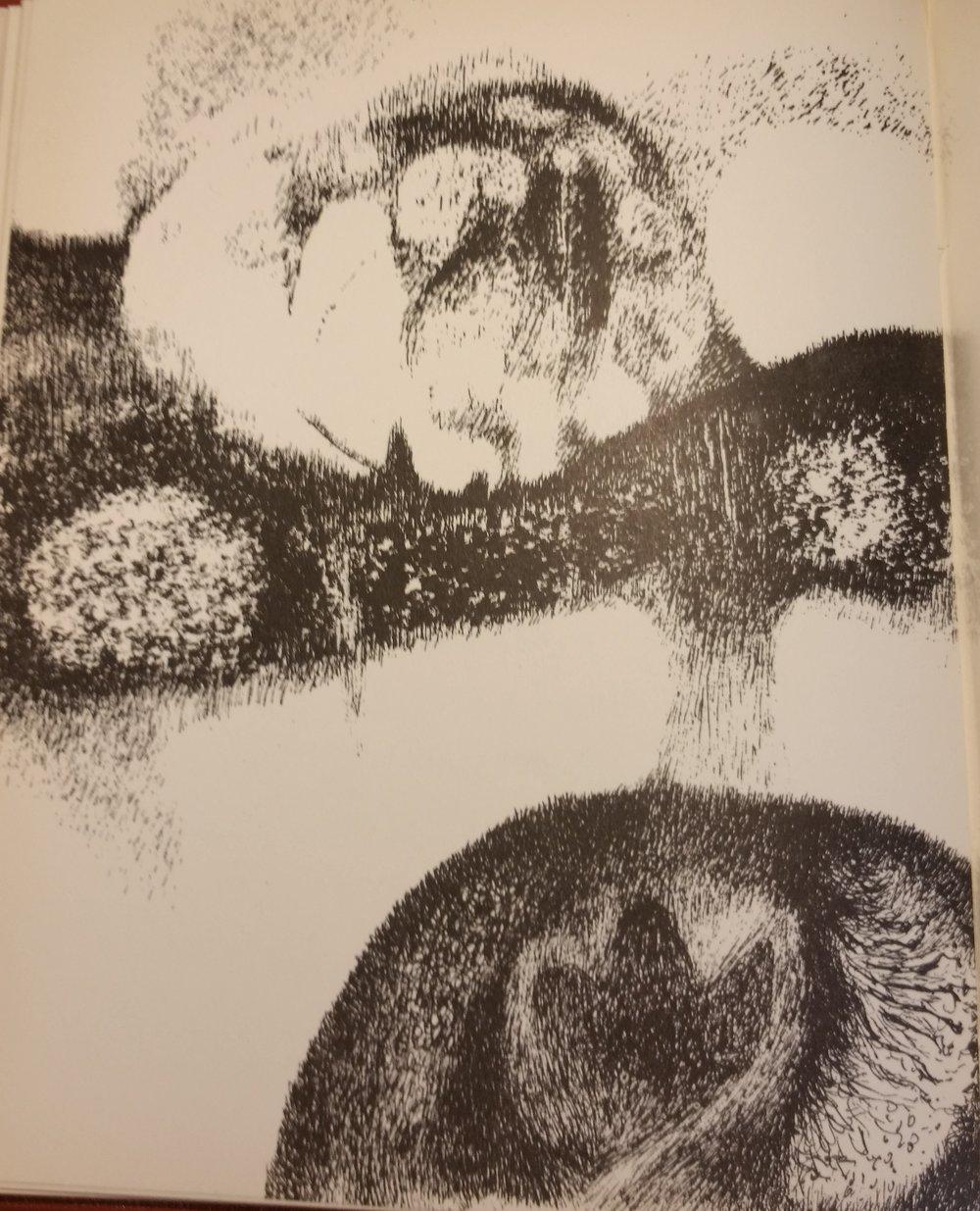 shiraz's moon - drawing 7