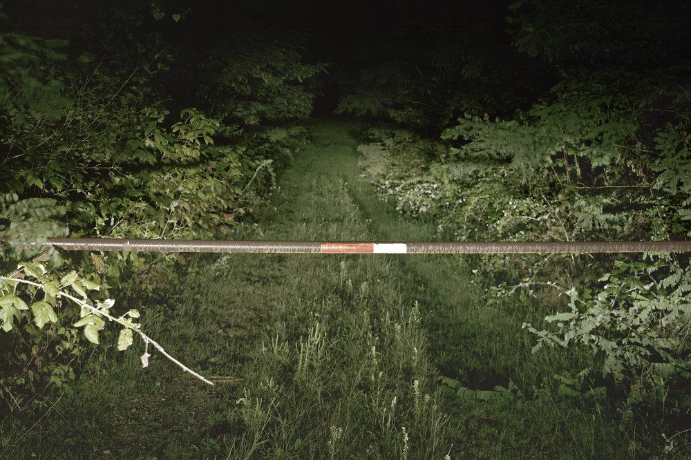 Hidden Drive , 2015