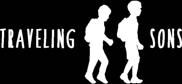 XYZ Design | Traveling Sons Logo Image