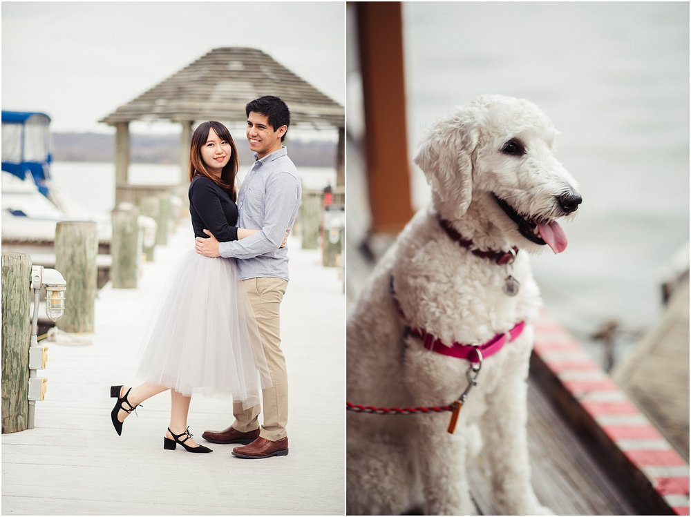 Old Town Alexandria Engagement Session with Goldendoodle Puppy by Waterfront