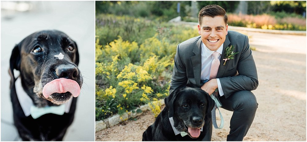 Best Dog with Groom Blush Pink Bridal Details at Lady Bird Johnson Wildflower Center Austin Texas Wedding