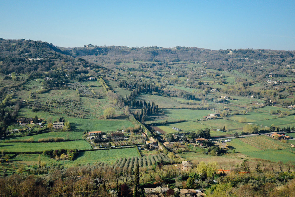 My mind's eye always returns to this landscape, the zig-zag cypress trees in the valley below Orvieto. And so, I anxiously await my return.