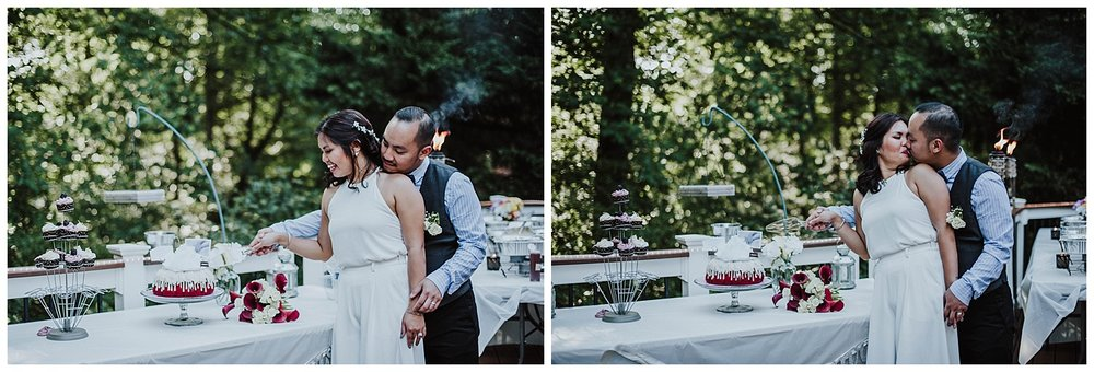 cake-cutting-diy-wedding-patio-deck-herndon.jpg