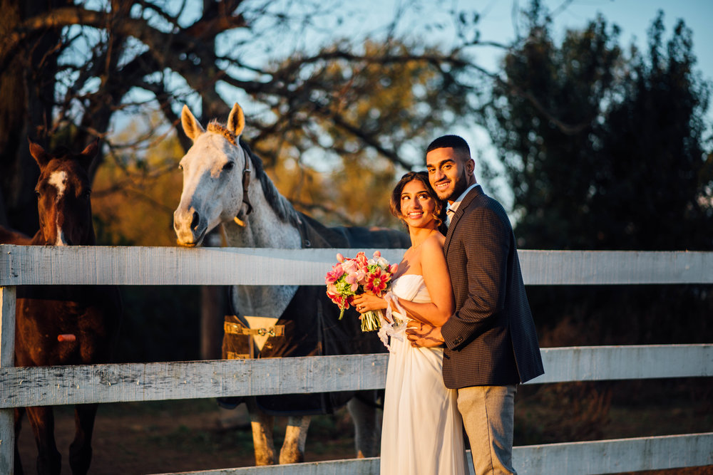 Briar-Patch-Indian-Wedding-Horses-Laurentina-Photography.jpg