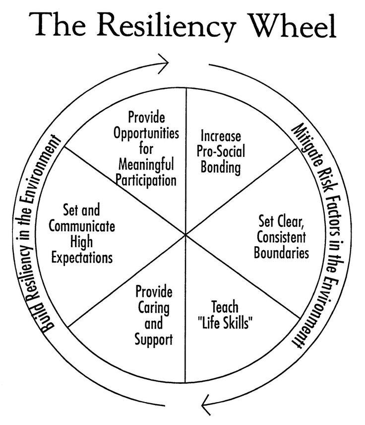 resilience wheel.jpg