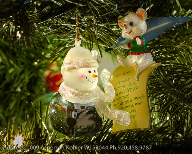 PAW Christmas Lights - Phil Waitkus