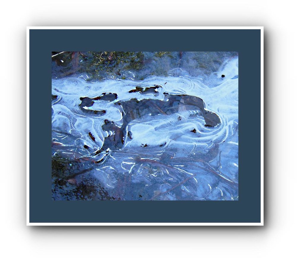 Ice Framed - John Gray