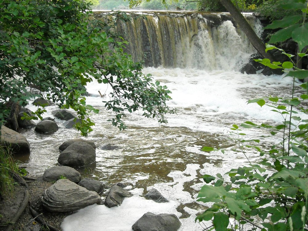 The Falls in Whitnall Park - Brian Chart