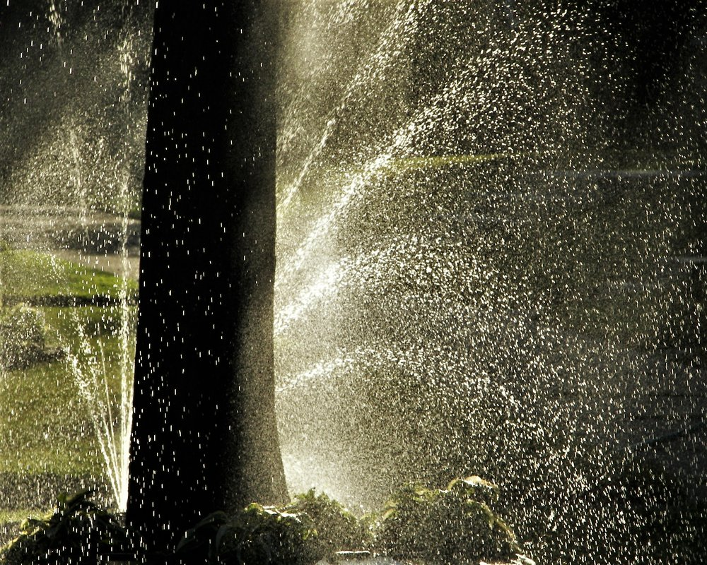Lawn Sprinkling Water - Steve Morse