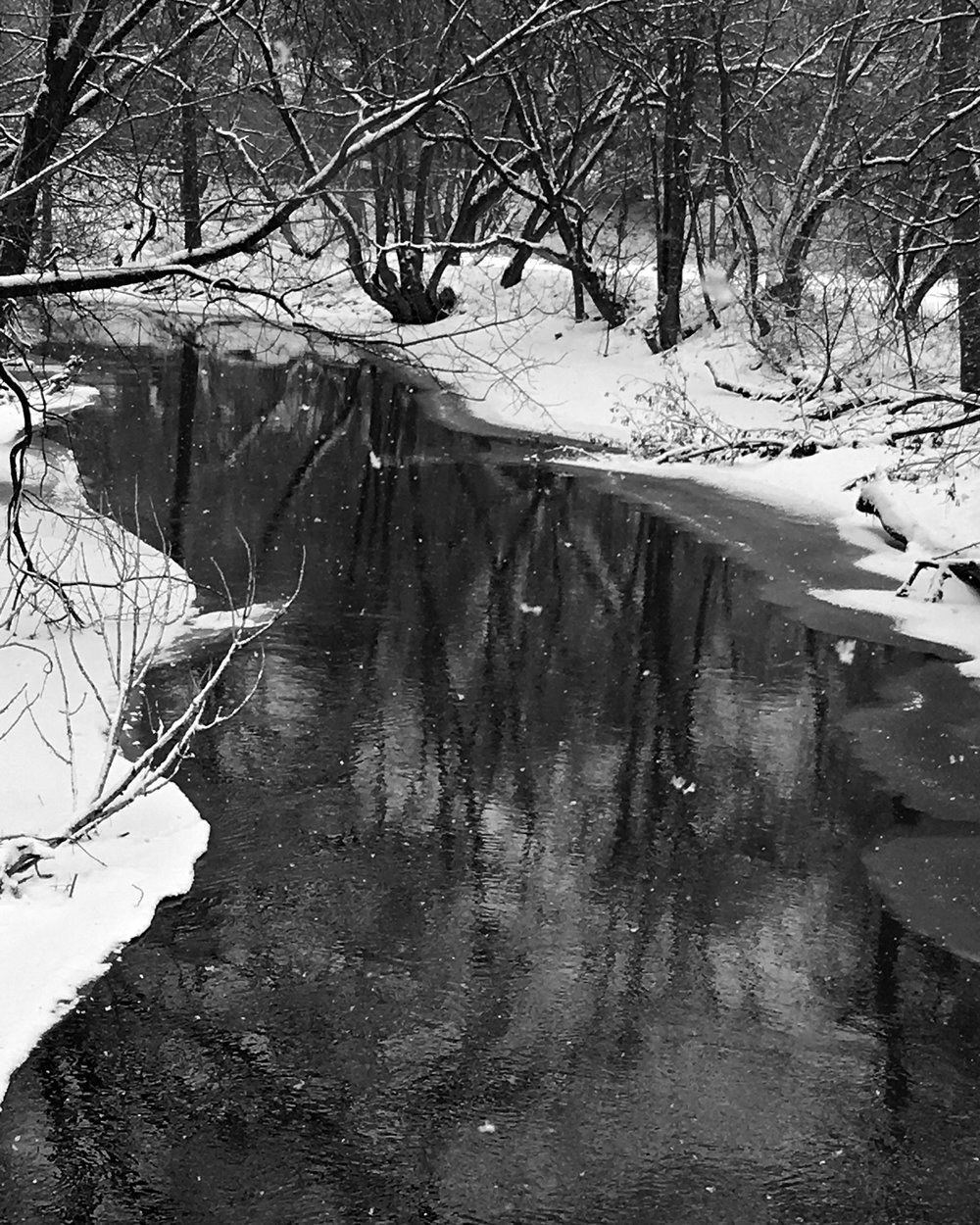 By the River on a Snow Day - Audrey Waitkus