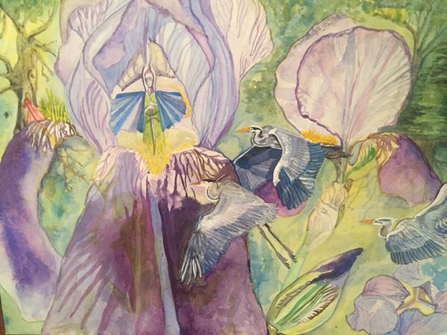 Iris - water colour