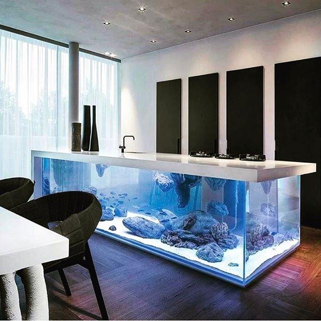 Yes please!! #aquarium #inthekitchen #design #architecture #beauty #homestyle